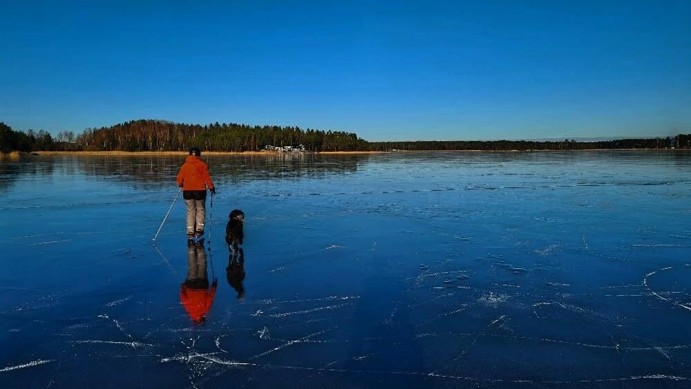 magiska skridskoisar, vandra med hund